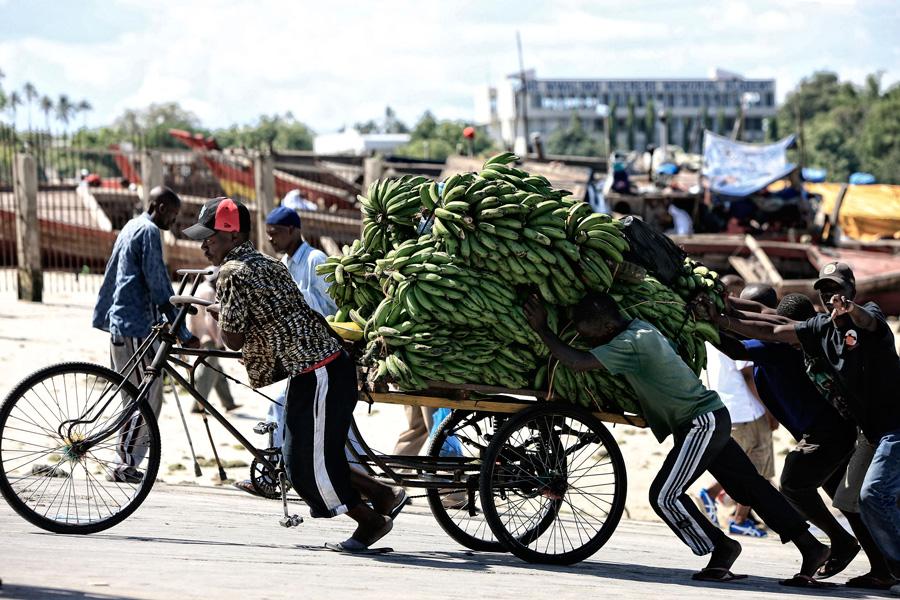 Struggle-with-bananas