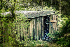 The-wood-shed